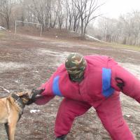 Охрана человека как курс реальной дрессировки